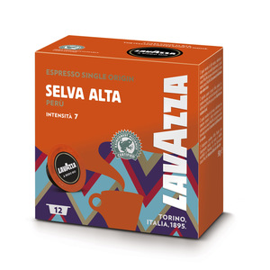 8842|Selva Alta